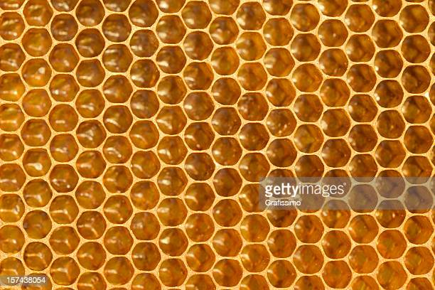 Detail-honeycomb