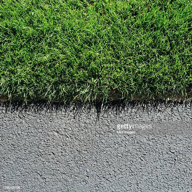Detail of lush, green grass and sidewalk, near Quincy, USA