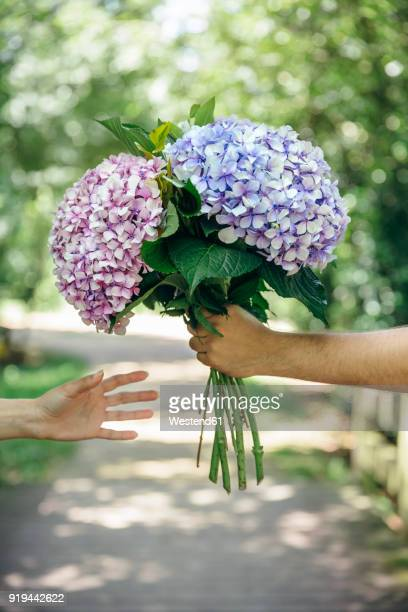 Detail of mans hand giving a bouquet of hydrangeas to a woman