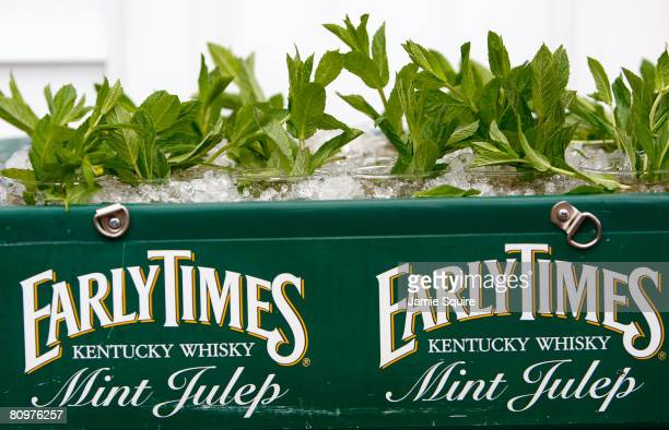 A detail of Mint Julep mixed drinks are seen on ice in a vendor's tray durinng the 134th running of the Kentucky Derby on May 3 2008 at Churchill...