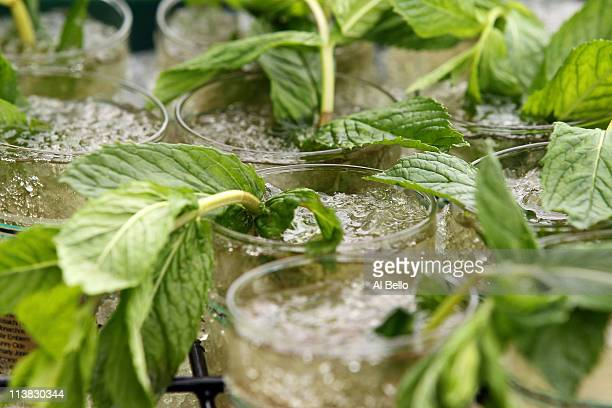 Detail of mint juleps packed in pack ice during the 137th Kentucky Derby at Churchill Downs on May 7, 2011 in Louisville, Kentucky.