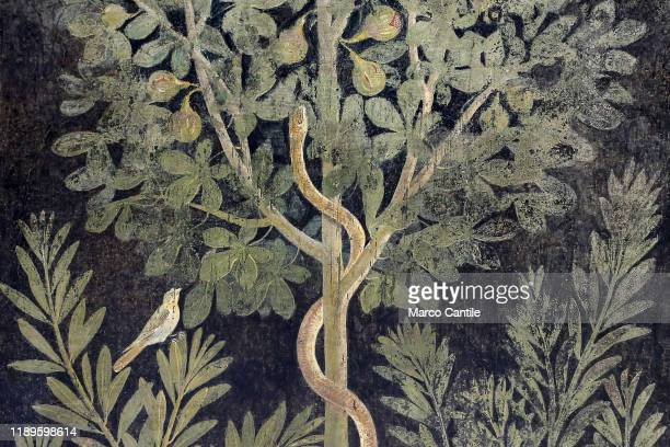 Detail of one of the frescoes in the restored Orchard House, located in the archaeological excavations of Pompeii.