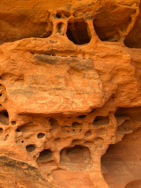 Detail of sandstone rock formation in Fay Canyon