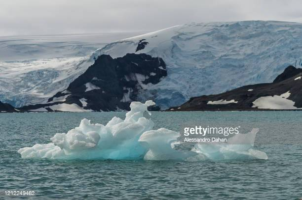 Detail of sculpted Iceberg floating in the Martel Cove with the Dobrowolski Glacier in the background, on January 04, 2020 in King George Island,...