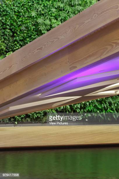 Detail of sloping Douglas fir timber platform above reflecting pool with green wall in background IBC Innovation Factory Kolding Denmark Architect...