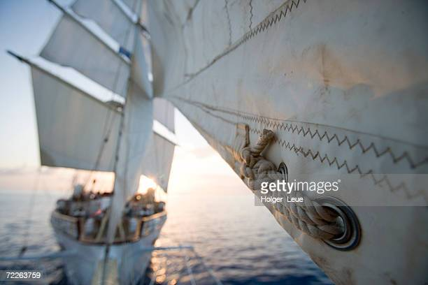 detail of star clipper sails, netherlands antilles - veliero foto e immagini stock