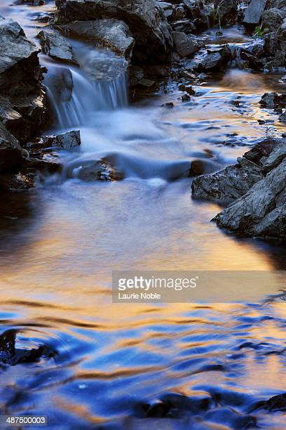 detail of stream running through yolyn am, omnogov - omnogov stock pictures, royalty-free photos & images
