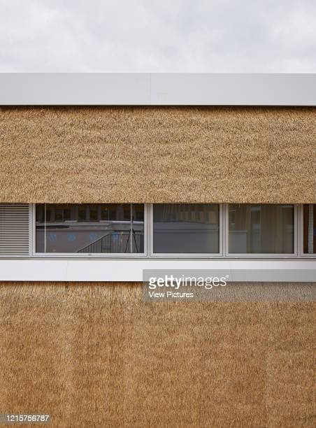 Detail of thatch panel facade with windows The Enterprise Centre UEA Norwich United Kingdom Architect Architype Limited 2015