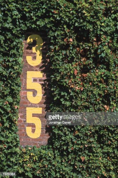 Detail of the 355 feet marker during the game between the Chicago Cubs and the Cincinnati Reds at Wrigley Field on September 26 2002 in Chicago...