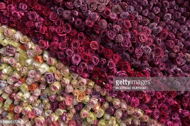 Detail of the floral pyramid where more than 500000 roses were set in order to run for a Guinness World Record in Tabacundo Ecuador on July 14 2018