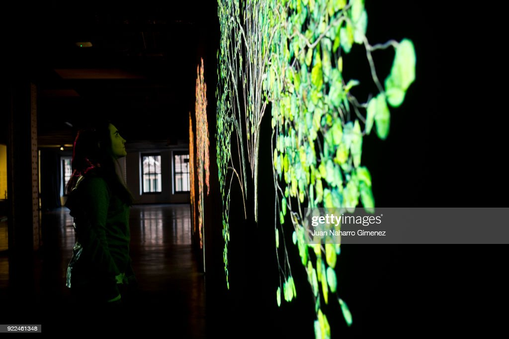 Jennifer Steinkamp Exhibition in Madrid : News Photo