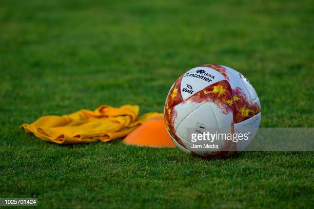 Detail of the official ball during the 7th round match between Veracruz and Tijuana as part of the Torneo Apertura 2018 Liga MX at Luis 'Pirata' de...