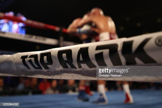 Detail of the ropes with 'Top Rank' during Jose Pedraza Raymundo and Beltran during the WBO lightweight championship bout at Gila River Arena on...