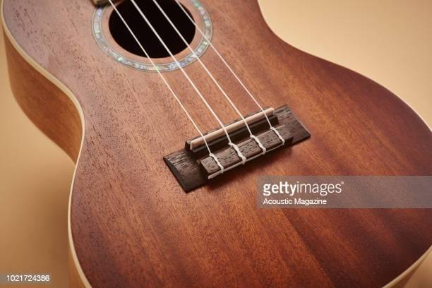 Detail of the rosewood bridge on a Cordoba 15CME concert ukulele taken on May 2 2017
