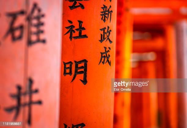 détail des portes de torii dans le sanctuaire de fushimi inari, kyoto, japon - saint eloi photos et images de collection