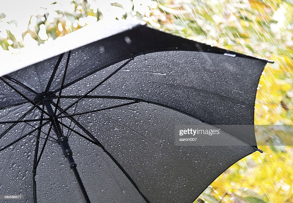 detail of umbrella : Stock Photo