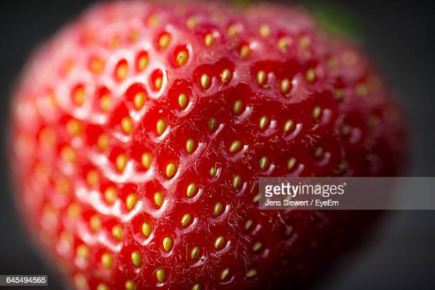 detail shot of a strawberry - jens siewert stock-fotos und bilder