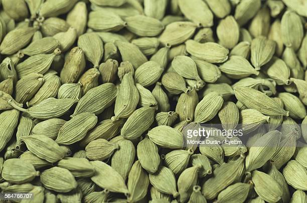 detail shot of green cardamom pods - cardamom stock photos and pictures