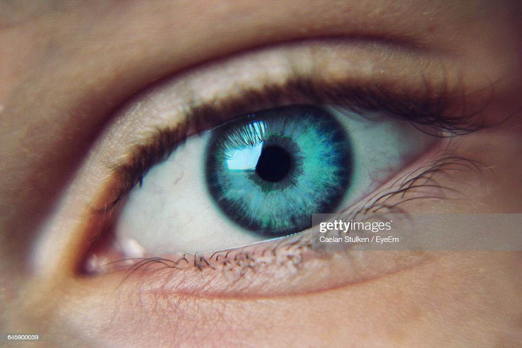 detail shot of human eye with lashes ストックフォト getty images
