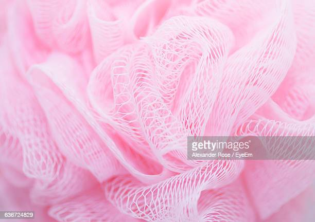 detail shot of pink loofah - loofah stock photos and pictures
