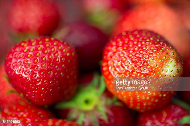 detail shot of strawberries - jens siewert stock-fotos und bilder