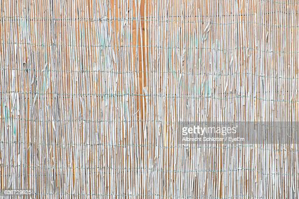 detail shot of wall - albrecht schlotter stock photos and pictures