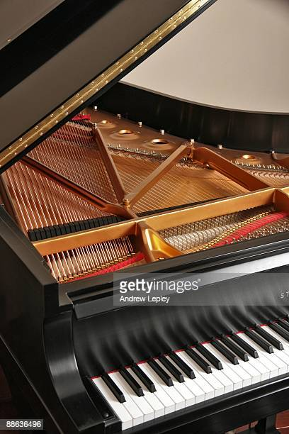 Detail view of a Steinway grand piano showing keys strings and hammers