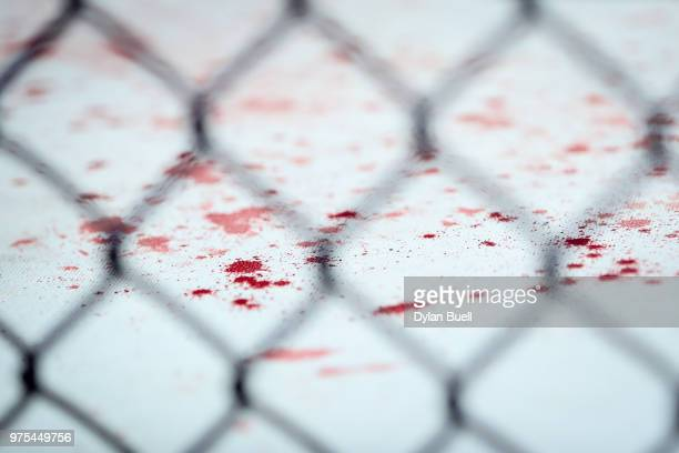 A detail view of blood after the heavyweight bout between Curtis Blaydes and Alistair Overeem of England during the UFC 225 Whittaker v Romero 2...
