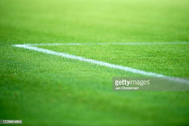 Detail view of grass and lines during the Danish 3F Superliga match between FC Midtjylland and Lyngby BK at MCH Arena on September 19 2020 in Herning...