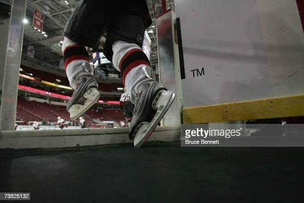 A detail view shows an Ottawa Senators player skating onto the ice for warmups before the game against the Carolina Hurricanes on February 27 2007 at...
