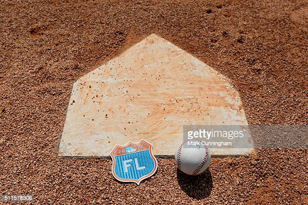 A detailed view of an official baseball and a Florida Grapefruit League 2016 Spring Training Patch laying on the field during the Detroit Tigers...