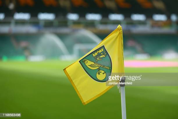 Detailed view of the corner flag during the Premier League match between Norwich City and Newcastle United at Carrow Road on August 17, 2019 in...
