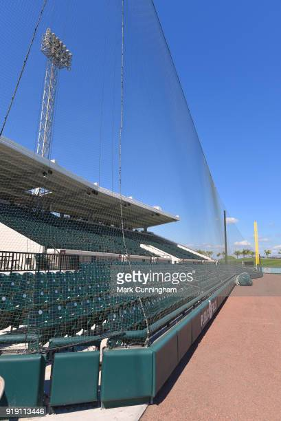 A detailed view of the new netting installed at Publix Field at Joker Marchant Stadium during the Detroit Tigers Spring Training workouts on February...