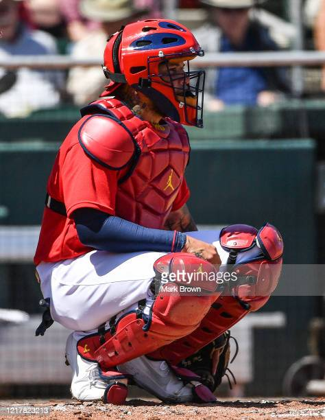 A detailed view of the Nike Air Jordan catcher's gear worn by Yadier Molina of the St Louis Cardinals during the spring training game against the...