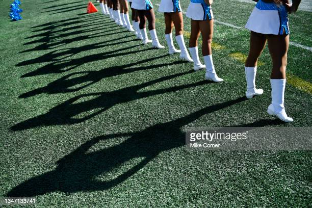 Detailed view of the shadows made by Carolina Panthers cheerleaders during the game between the Carolina Panthers and the Minnesota Vikings at Bank...