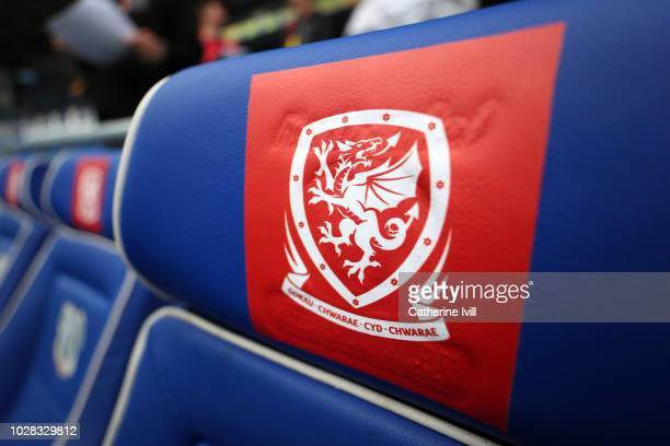 Detailed view of The Wales badge during the UEFA Nations League B group four match between Wales and Republic of Ireland at Cardiff City Stadium on...
