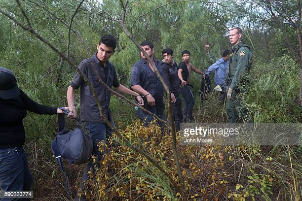 Detained immigrants walk through the brush after being captured by U.S. Border Patrol agents on August 16, 2016 in Roma, Texas. Border security has...