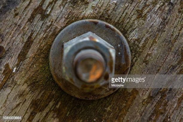 detalhe de parafuso de porca num portão de madeira - brazil nut - fotografias e filmes do acervo