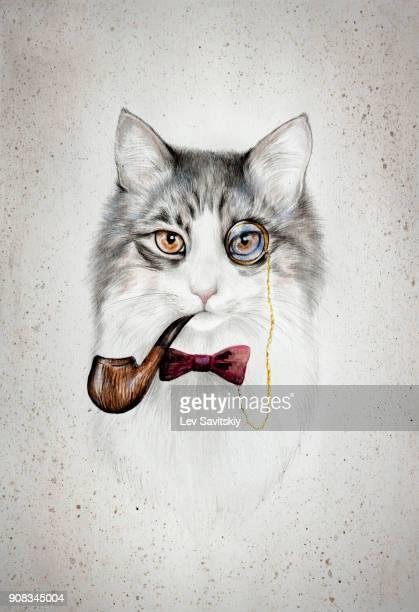 Detective cat