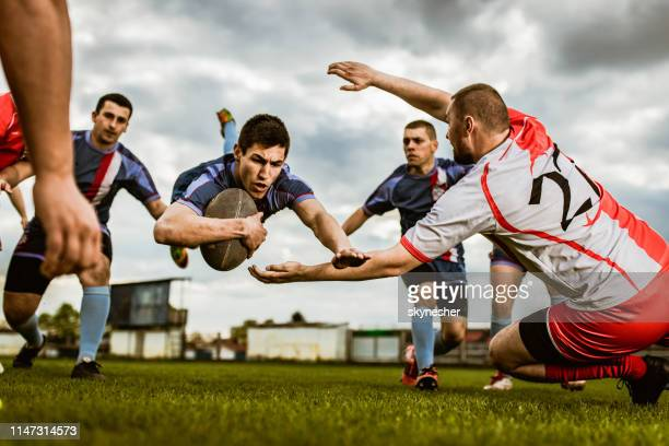 determined player scoring touchdown on a rugby match at playing field. - touchdown stock pictures, royalty-free photos & images