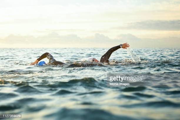 determinadas mujeres nadando en el mar durante la puesta de sol - natación fotografías e imágenes de stock