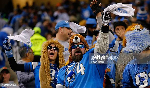 Detroit Lions fans show their support for their team during the third quarter of the game against the Chicago Bears at Ford Field on November 27 2014...