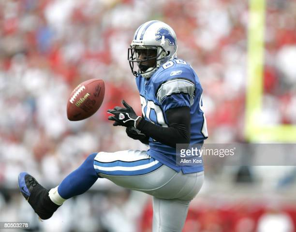 Detroit Lions wide receiver Charles Rogers drops a pass during the fourth quarter against Tampa Bay at Raymond James Stadium in Tampa Florida on...