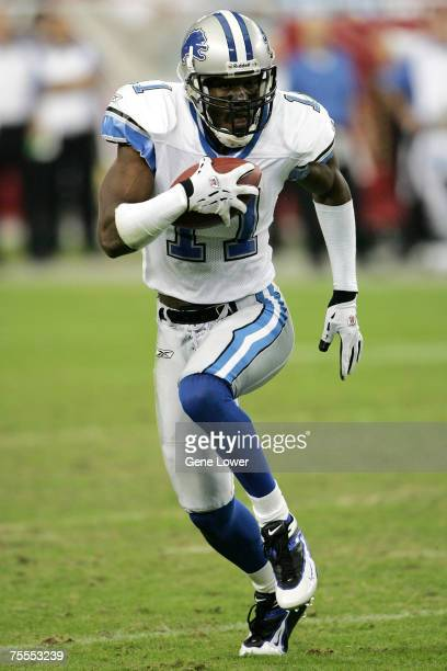 Detroit Lions wide receiver Roy Williams looks for yards downfield during a game between the Arizona Cardinals and Detroit Lions at the University of...