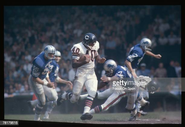 Detroit MI CIRCA 1960's Gale Sayers of the Chicago Bears carries the ball in a mid circa 1960's NFL football game against the Detroit Lions at Tiger...