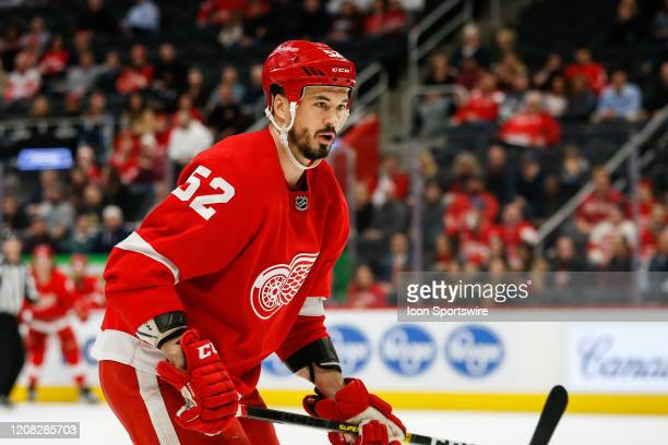 Detroit Red Wings defenseman Jonathan Ericsson of Sweden looks on during a regular season NHL hockey game between the Carolina Hurricanes and the...