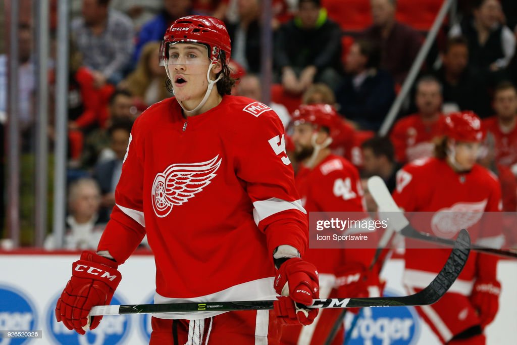 NHL: FEB 22 Sabres at Red Wings : News Photo