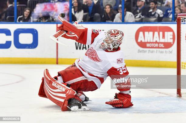 Detroit Red Wings goalie Jimmy Howard loses his balance and recovers during the third period of an NHL game between the Detroit Red Wings and the...