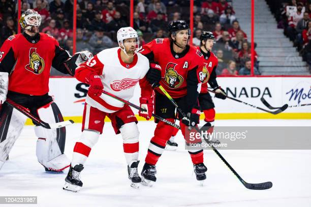 Detroit Red Wings Left Wing Darren Helm battles Ottawa Senators Defenceman Ron Hainsey in front of Ottawa Senators Goalie Marcus Hogberg during first...