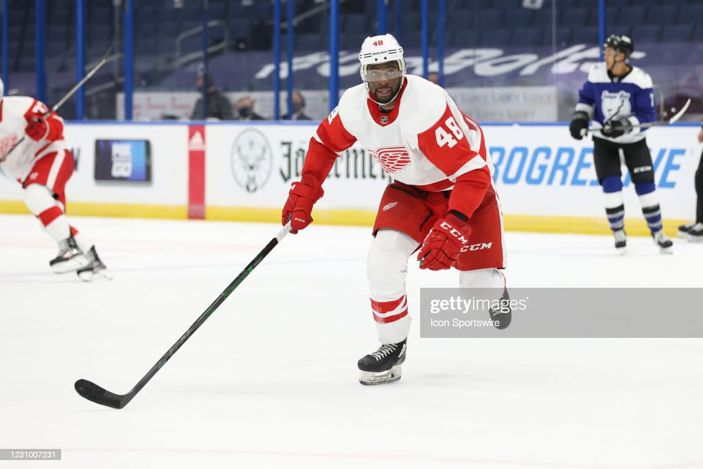 NHL: FEB 05 Red Wings at Lightning : News Photo